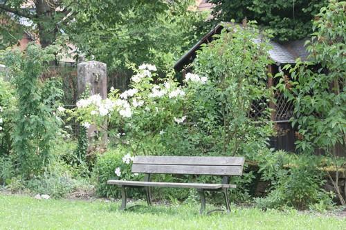Jardin 2013 06 072
